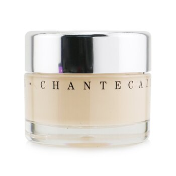 Chantecaille Future Skin Oil Free Gel Foundation - Aura